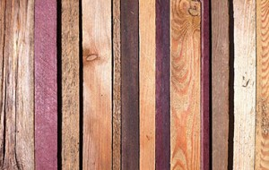 wood-of-the-world